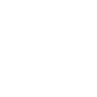 No dollar sign icon in white outline